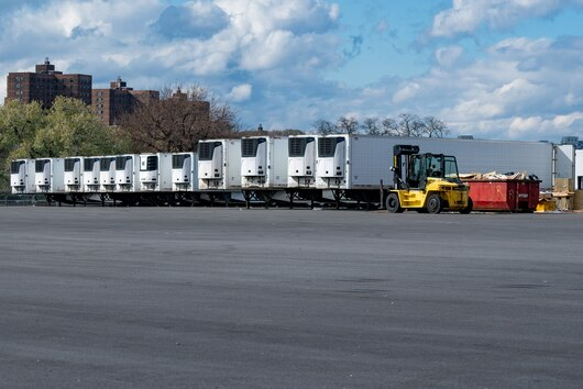 Refrigerated trucks lined up on Randalls Island, New York.